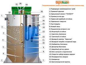 Конструкция и устройство модели евробилан
