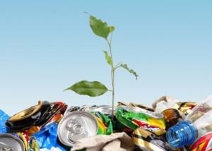 Поговорим о проблеме мусора и его борьбы