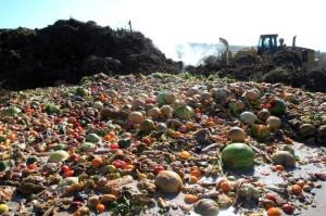 Вопросы о методах утилизация пищевых отходов