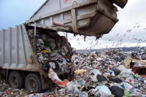 Как происходит утилизация пищевых отходов